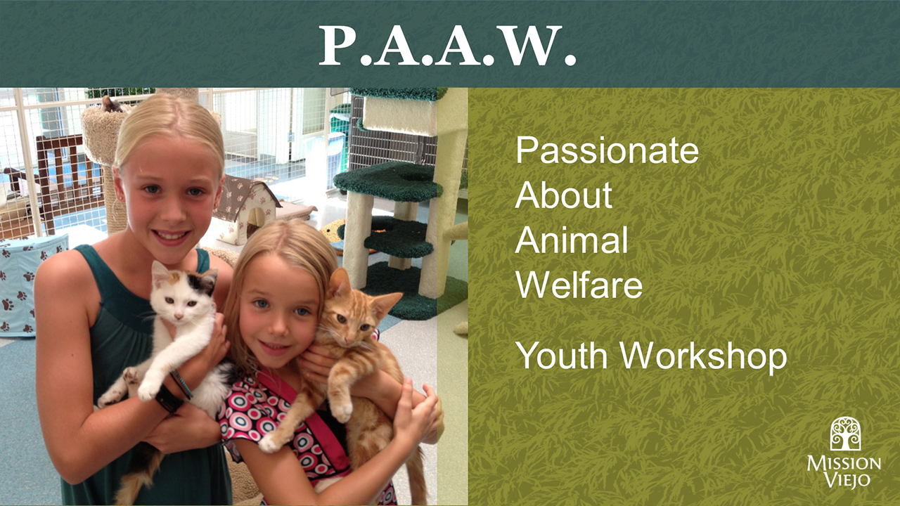 Passionate about animal welfare youth workshop
