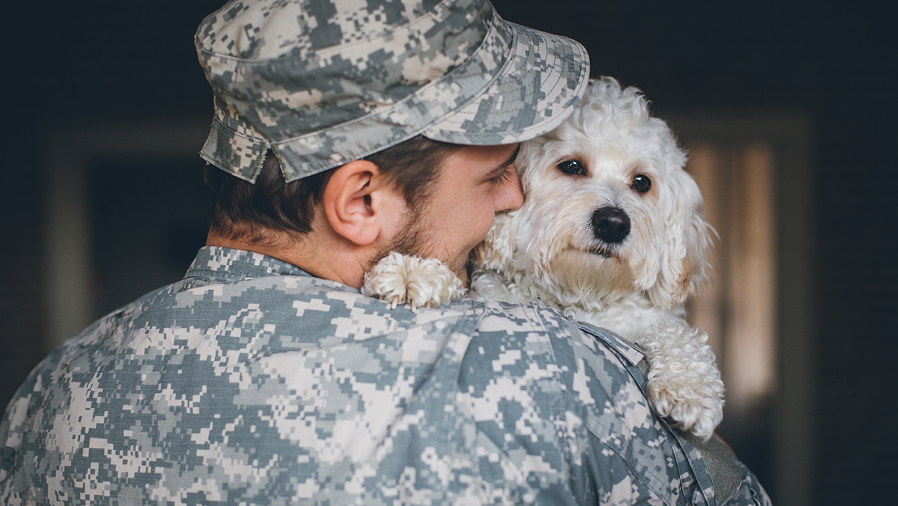military person with dog