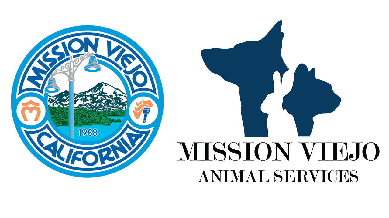 city logo and mvas logo