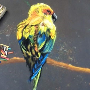 painting of bird