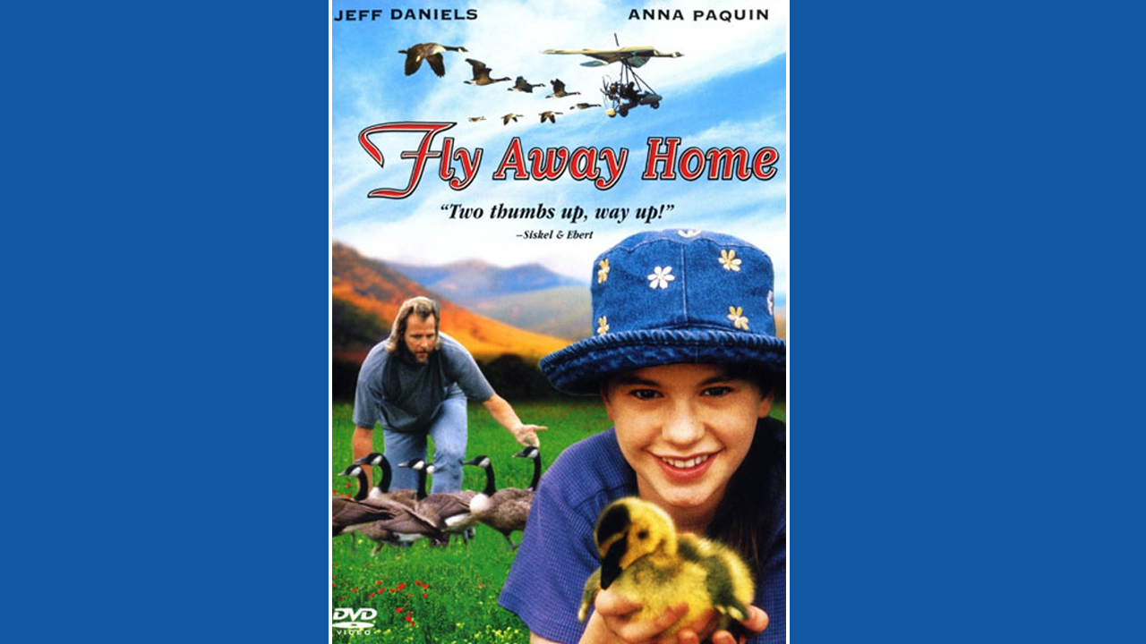 Fly away home movie poster