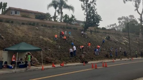 Slope maintenance